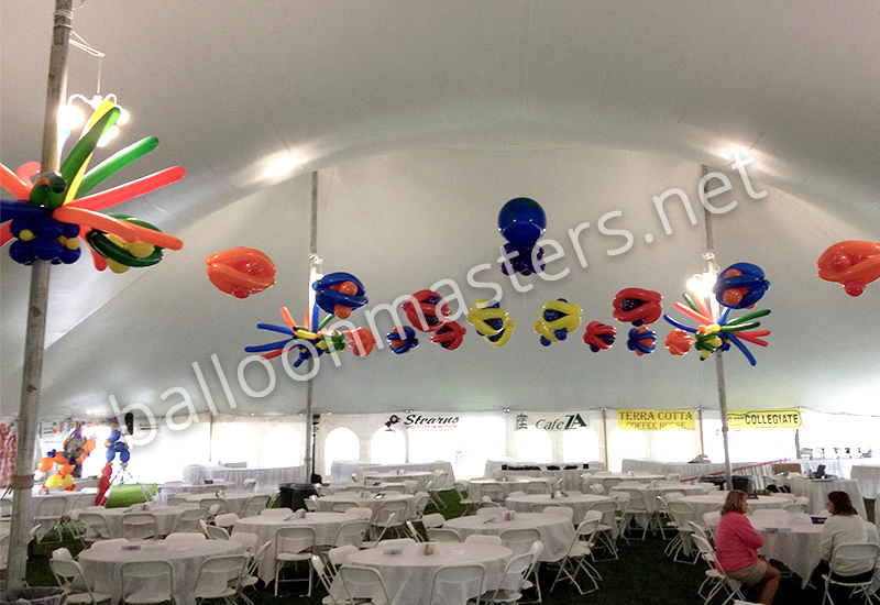 Balloon decor master series dvd free download for Balloon decoration courses dvd